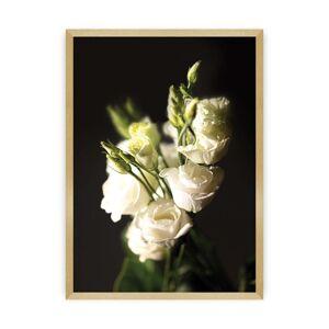Plakát Dark Flowers II