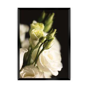 Plakát Dark Flowers I