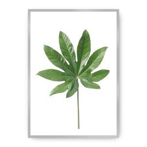 Plakát  Leaf Green